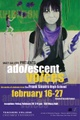 "poster for ""Adolescent Voices: The work of students from the Frank Sinatra High School"" Exhibition"