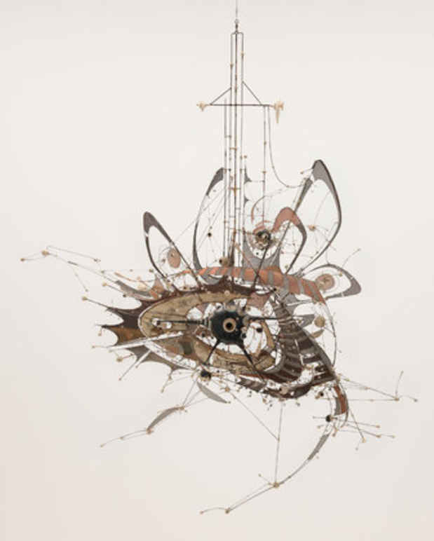 "poster for Lee Bontecou ""All Freedom in Every Sense"""