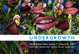 "poster for ""Undergrowth"" Exhibition"