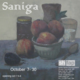 "poster for EM Saniga ""Paintings"""