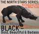 "poster for ""Black, The North Stars Series: Contemporary Norwegian Art in NYC"" Exhibition"