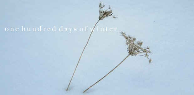 "poster for Rachelle Tolwin ""One Hundred Days of Winter"""