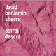 "poster for David Benjamin Sherry ""Astral Desert"""