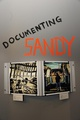 "poster for ""Documenting Sandy"" Exhibition"