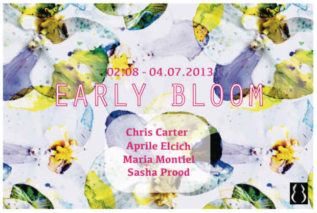 "poster for ""Early Bloom"" Exhibition"