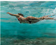 "poster for Eric Zener ""Recent Paintings"""