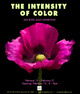 "poster for Ian Ross ""the intensity of color"""
