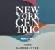 "poster for ""New York - Centric"" Exhibition"