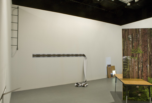 Vlatka Horvat, ''Or Some Other Time,'' installation view. Photos: Adam Reich.