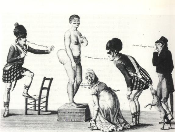 19th-century French cartoon ''La Venus hottentote''